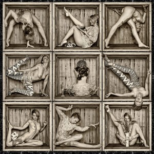 Best in Show IV, Box Grid, Raymond Elstad